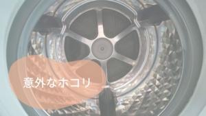 ドラム式洗濯乾燥機の意外なホコリ